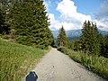 Le sentier du chard du beurre - panoramio (6).jpg