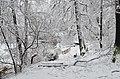 Lebenswertes chemnitz winter stadtpark schneebruch kleiner teich 2.jpg