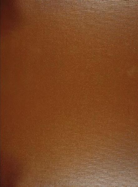 File:Leeser-Bible-1854.djvu