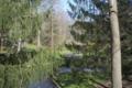 Leonard-j-buck-garden.png
