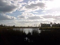 Leski. A view of the lake.JPG