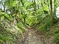 Linch Down Roman road.JPG