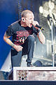 Linkin Park-Rock im Park 2014- by 2eight 3SC0463.jpg