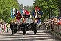Lippujuhlan päivän paraati 2014 034 Reserviläis- ja maanpuolustusjärjestöt.JPG