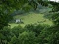 Llyfnant Valley - geograph.org.uk - 34383.jpg