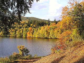 Loch Faskally lake in the United Kingdom