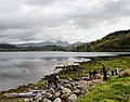 Loch Sunart launch - geograph.org.uk - 1237521.jpg