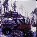 Logging northern Ontario 02.jpg