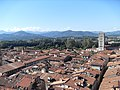 Looking over Lucca - panoramio.jpg