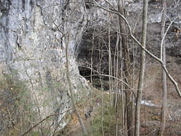 Lost Cove Cave From Cliff.jpg