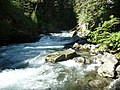 Lostine River at Pole Bridge, Wallowa-Whitman National Forest (26776502526).jpg