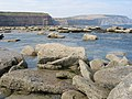 Low tide near Staithes - geograph.org.uk - 695810.jpg