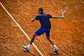 Lukas Rosol at 2014 Italian Open.jpg