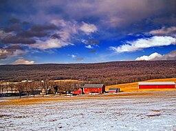 none A farm in Lynn Township, 2008