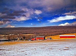 Lynn Township farm