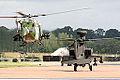 Lynx & Apache (3870335117).jpg