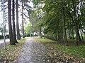 Mähe tee - panoramio - Aulo Aasmaa (5).jpg