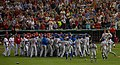 MG 7092 Bench-clearing brawl.jpg