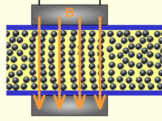 Magnetorheological fluid