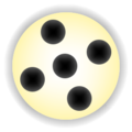 Mancala highlight (5).png