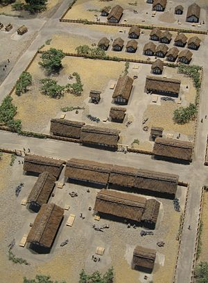Oppidum of Manching - Model of the settlement's central area