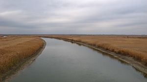 Manych River - Image: Manych River, near highway Rostov on Don Volgodonsk
