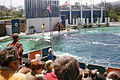 MarineWorld1970.jpg