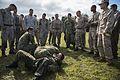Marines participate in Exercise Forest Light 16-1 150910-M-KE800-142.jpg