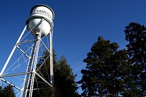 Marysville, Washington - Marysville's historic water tower, located in Comeford Park