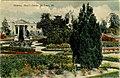 Materna, Shaw's Garden (NBY 437647).jpg