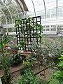 Mediterranean - US Botanic Gardens 73.jpg