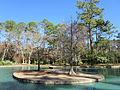 Mercer Arboretum, 2012, Storey Lake island.JPG