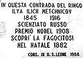 Messina Targa riconoscimento onorifico di Metchnicov, Ilya Ilich.jpg