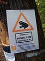 Michelský les, zpomalte, migrace žab.jpg