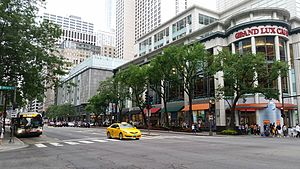 Michigan Avenue (Chicago) - The many upscale shops in Michigan Ave.