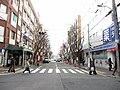 Mikagehonmachi - panoramio (11).jpg