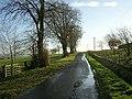 Minor Road Near Dalruscan - geograph.org.uk - 287563.jpg