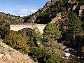 Moltifao pont de Mulindina sur l'Asco.jpg