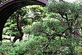 Moon bridge in Japanese Tea Garden (San Francisco) (TK7).JPG