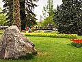 Morges-Fete Tulipe 5.jpg