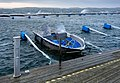 Motorboat and dock fingers floating high in Lysekil during Storm Ciara 1.jpg