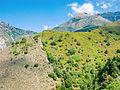 Mount Marathos.JPG