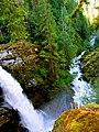 Mt. Baker-Snoqualmie National Forest (9290035503).jpg