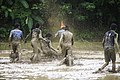 Mud football Kinassery Kerala India 9.jpg