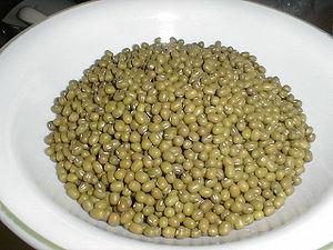 Mungbohnen (Vigna radiata)