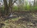Muromets Park Kyiv fire traces.jpg