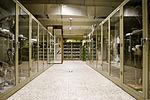 Museum voor Dierkunde 2010PM 0340 21H7423.JPG