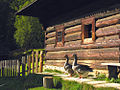 Muzeum oravskej dediny Zuberec - Brestova (09-09-1).jpg