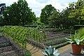 Myddelton House Kitchen Garden Raised beds.jpg