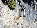 Nacimiento del Rio Gudalquivir - 002 (30714903785).jpg